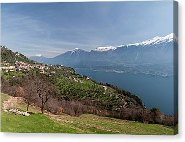 Near Tremosine, Lago Di Garda Canvas Print by Sergio Pitamitz