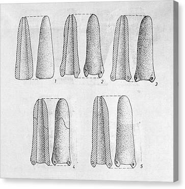 Neolithic Phallus Figures Canvas Print by Granger