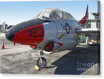 North American Buckeye T2-a Canvas Print by Gregory Dyer