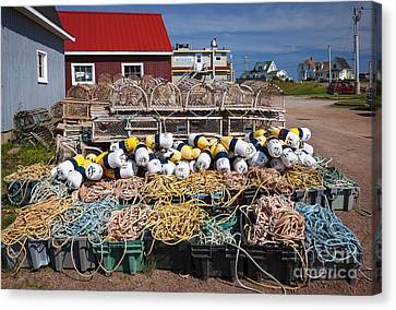 North Rustico Canvas Print by Elena Elisseeva