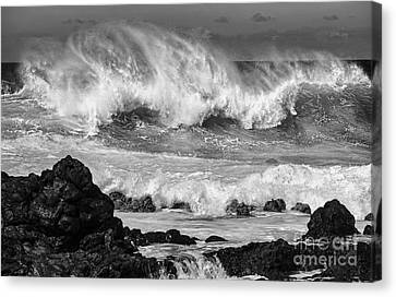 Sea Watch Canvas Print - North Shore Crash by Jamie Pham