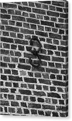 Number Tree On Brick Canvas Print by Iris Richardson