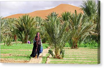 Moroccan Canvas Print - Oasis Maintenance by Thierry Berrod, Mona Lisa Production