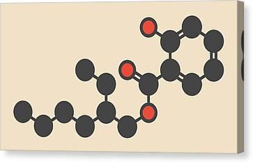 Octyl Salicylate Sunscreen Molecule Canvas Print by Molekuul