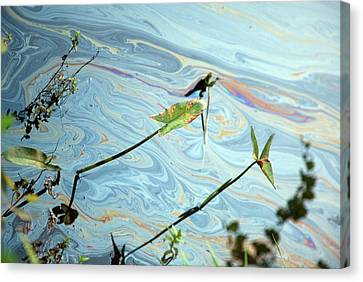 Oil Spill Canvas Print by Jim West