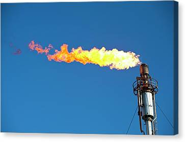 Oil Terminal Flaring Off Gas Canvas Print by Ashley Cooper