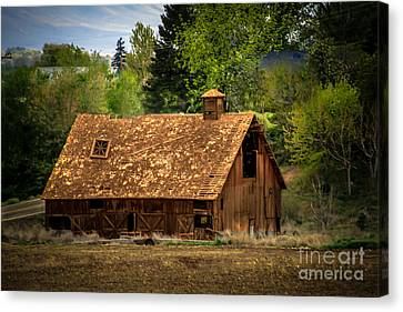 Old Barn Canvas Print by Robert Bales