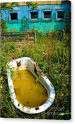 Nature Center Canvas Print - Old Bathtub Near Painted Barn by Amy Cicconi