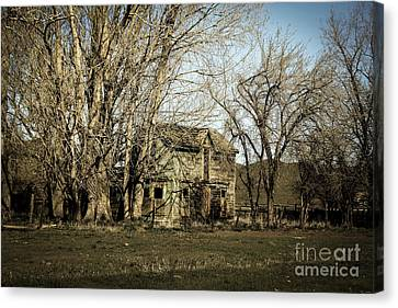Old Farm House Canvas Print by Robert Bales