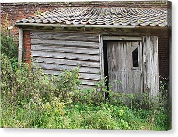 Old Hut Canvas Print by Tom Gowanlock