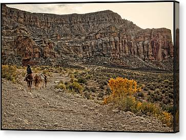 Old Mule Train Canvas Print by Stellina Giannitsi