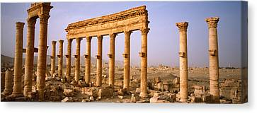 Old Ruins On A Landscape, Palmyra, Syria Canvas Print by Panoramic Images