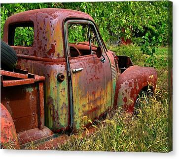 Old Rusty Canvas Print by Julie Dant