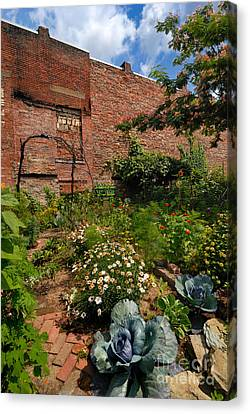 Olde Allegheny Community Gardens Canvas Print by Amy Cicconi