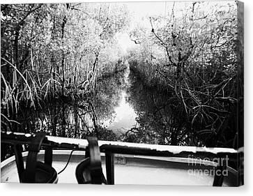 On Board An Airboat Ride Through A Mangrove Jungle In Everglades City Florida Everglades Usa Canvas Print by Joe Fox