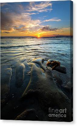 Oregon Coast Canvas Print - On The Horizon by Mike  Dawson