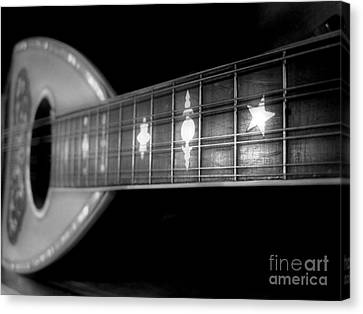Canvas Print featuring the photograph On The Shelf by Paul Cammarata