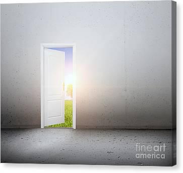 Open Door To A New World Canvas Print by Michal Bednarek