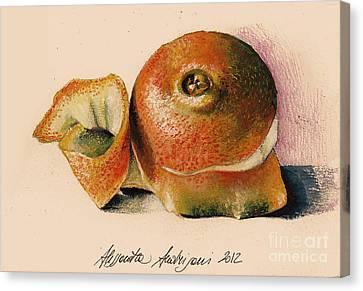Orange..navel Canvas Print by Alessandra Andrisani