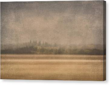 Dappled Light Canvas Print - Oregon Rain by Carol Leigh