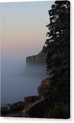 Otter Cliffs 2 Canvas Print