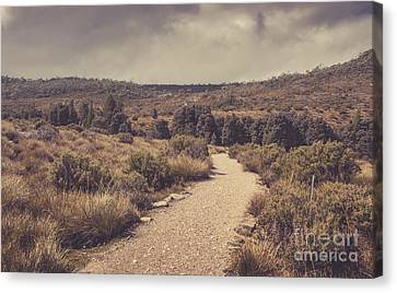 Outback Country Bush Landscape. Rural Australia Canvas Print by Jorgo Photography - Wall Art Gallery
