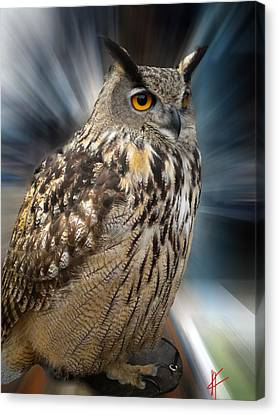 Canvas Print featuring the photograph Owl Alba Spain  by Colette V Hera  Guggenheim