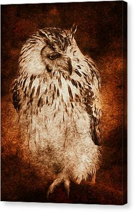 Owl Canvas Print by Svetlana Sewell