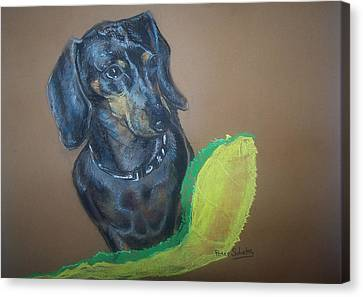 Canvas Print featuring the pastel Ozzie Dashound by Peter Suhocke