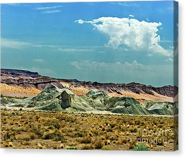 Painted Desert National Park Canvas Print by Bob and Nadine Johnston