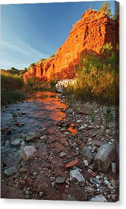 Palo Duro Canyon State Park, Texas Canvas Print by Larry Ditto