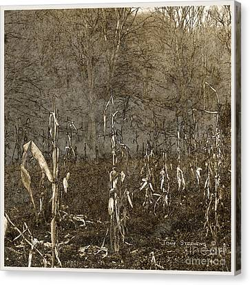 Paltry Harvest Canvas Print