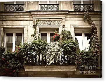 Grid Canvas Print - Paris Windows by Elena Elisseeva