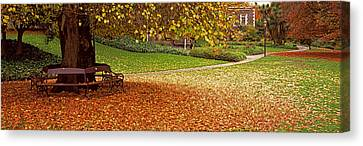 Park At Banks Of The Avon River Canvas Print by Panoramic Images