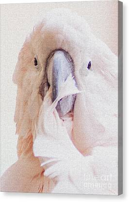Canvas Print featuring the photograph Parrot Flair by Roselynne Broussard
