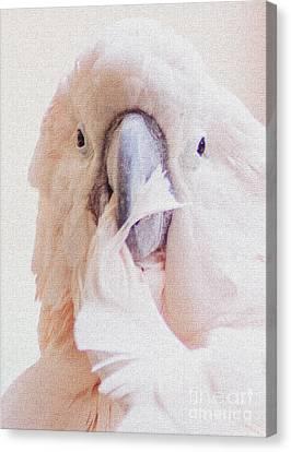 Parrot Flair Canvas Print