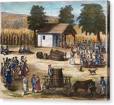 Party Of The Harvest Of The Grapes Canvas Print