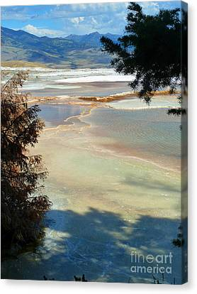 Pastel Canvas Print by Lauren Leigh Hunter Fine Art Photography