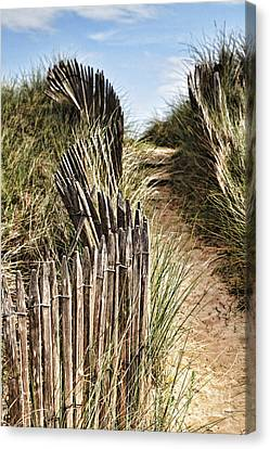 Path Through Dunes Canvas Print