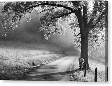 Path To The Woods Canvas Print by Andrew Soundarajan