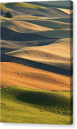 Patterns Of The Palouse Canvas Print