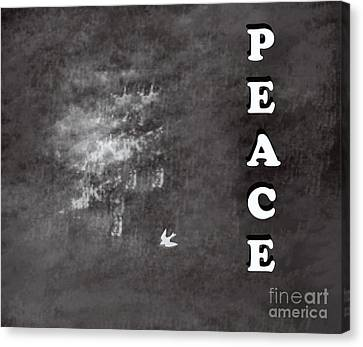 Peace Canvas Print by Trilby Cole