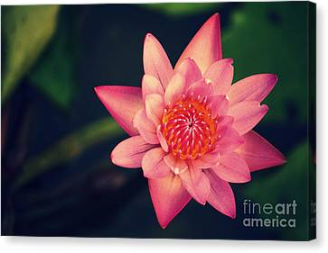 Peace Within Canvas Print by Vishakha Bhagat