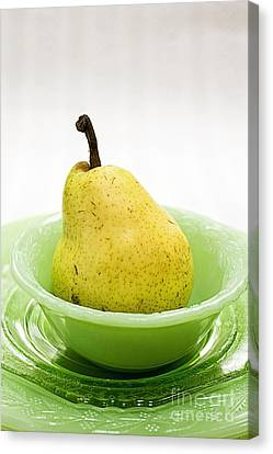 Pear Still Life Canvas Print by Edward Fielding