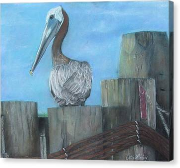 Pelican At Hatteras Ferry Canvas Print