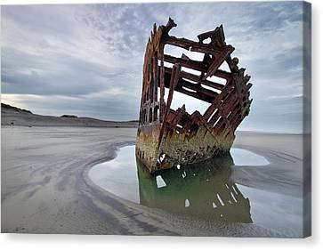 Peter Iredale At Dawn Canvas Print by David Gn