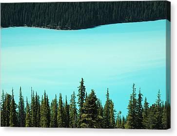 Peyto Lake. Banff National Park In Alberta. Canvas Print by Rob Huntley