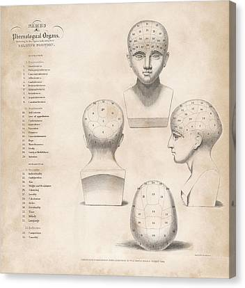 Phrenology Head Regions Canvas Print by King's College London