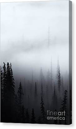 Piercing The Clouds Canvas Print by Mike  Dawson
