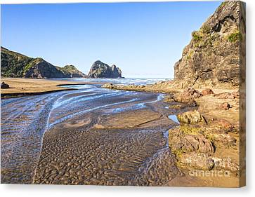 Auckland Canvas Print - Piha Beach Textured Sand Auckland New Zealand by Colin and Linda McKie